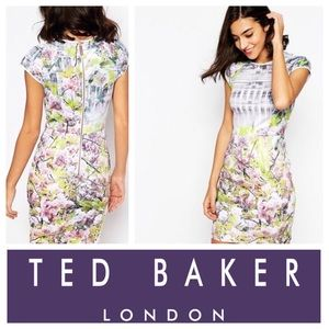Ted Baker Pancha Window Blosson Fitted Dress